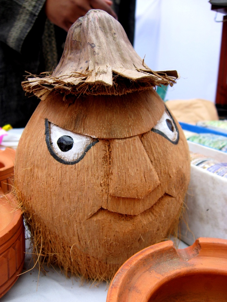 Coconut_face_(2416401345)